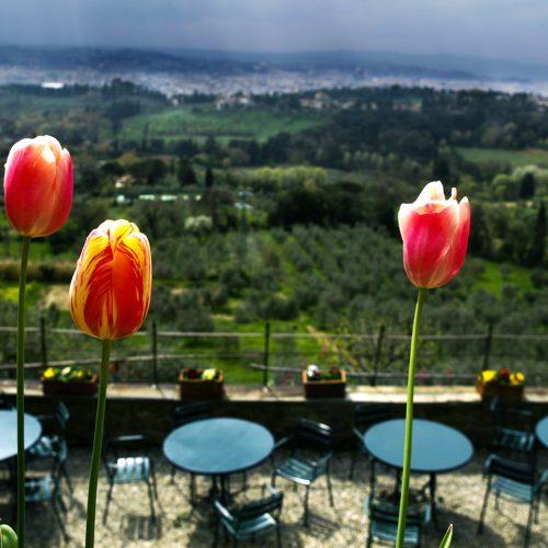 terrasse panoramique Pensione Bencistà, belvedere Firenze, Toscana e Italia
